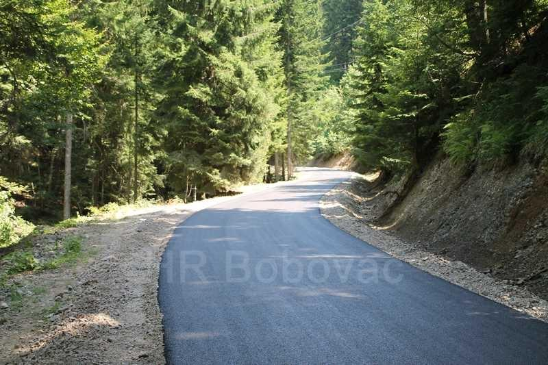 IMG8005-BorovicaPut