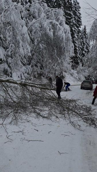 snijeg-problemi-3
