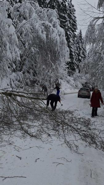 snijeg-problemi-2